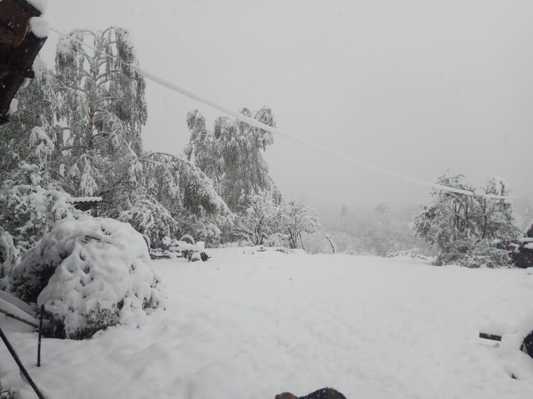 На юге России выпало полметра снега, многие жители остались без света